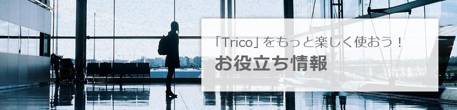 「Trico」についてもっと知りたい!